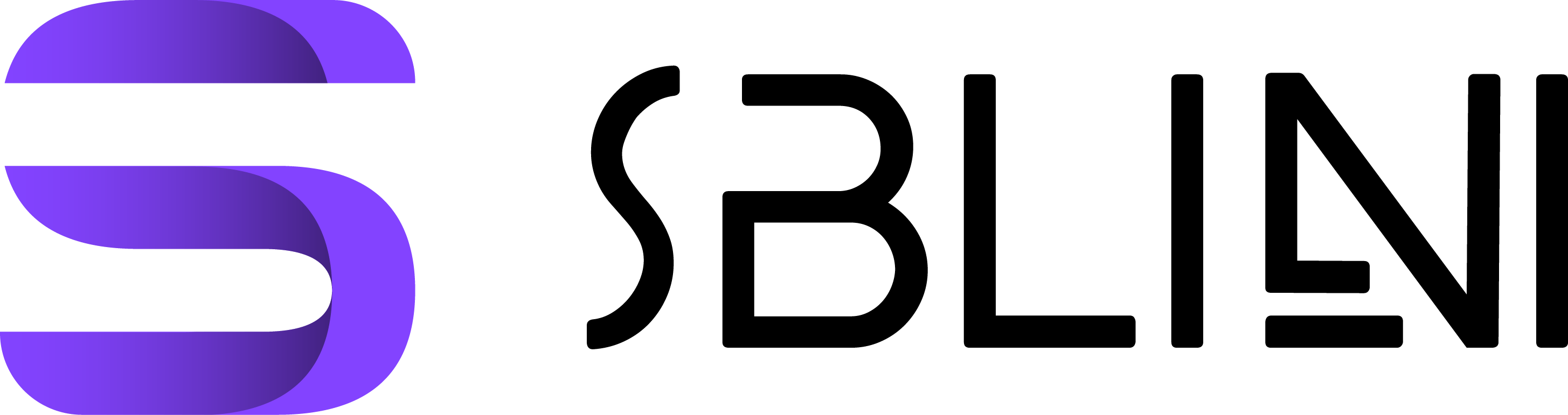 SBLINI Agency Development & Designs for companies and individuals